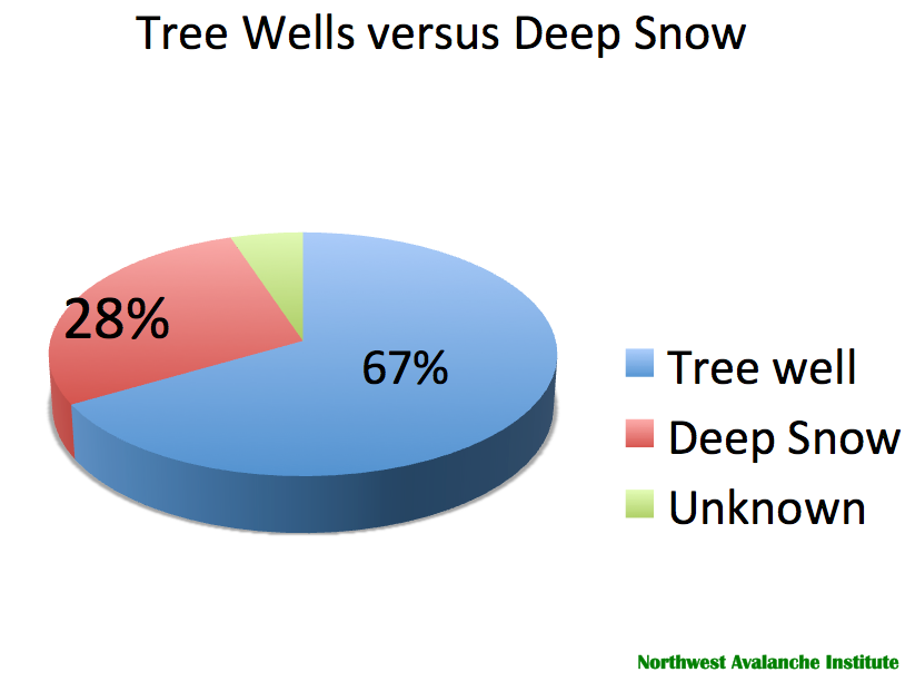 Tree Well And Snow Immersion Suffocation Sis Sis By The Numbers